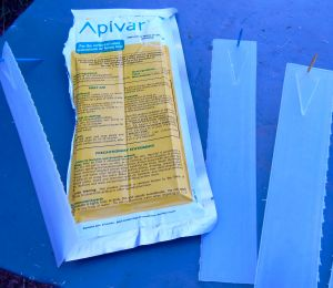 Apivar mite treatment strips.