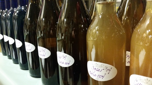 Mead! Beautiful, tasty mead!